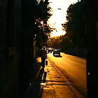Sunset Street by Erland Howden