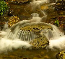 waterfall, Great Smokey Mtns by fauselr