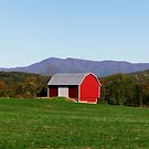 Little Red Barn by James Brotherton