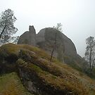 Fog on the Pinnacles by bouldercreek
