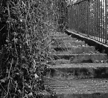 Stairs To Nowhere by Daniel James