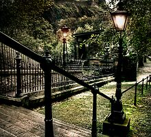 Lamplight by Linda  Morrison