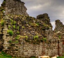 Pendragon Castle Sticker