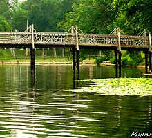 #415  Walking Bridge Of Spring Lake by MyInnereyeMike
