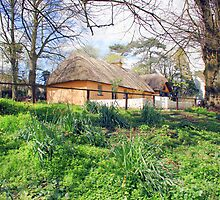 Thatched cottage at Bunratty by John Quinn