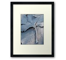 Frosted Leaf © Framed Print