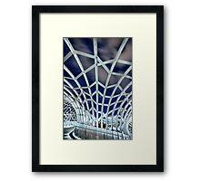 Under The Metal Web Framed Print