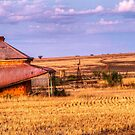 On the farm by Dave  Hartley
