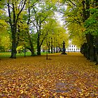 The english park by bluecoomassie