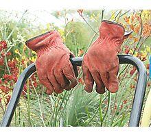 Gardener wanted Photographic Print