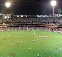 Inside the Melbourne Cricket Ground by Andrew Caple