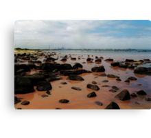 parting of the red sea Canvas Print