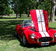 1965 Shelby Cobra by Glenna Walker