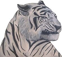 White Tiger by tjrowan
