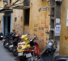 Motorbikes (Ha Noi, Viet Nam) by Matthew Stewart