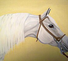 Firecracker arab horse portrait oil painting by coolart