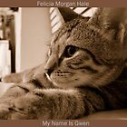 My Name Is Gwen by Felicia Morgan Hale