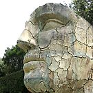 Florence Series #10 - Giant Face in Boboli Gardens by Keith Richardson