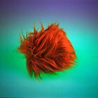 What the Tribble by Lilith Bill