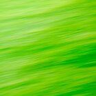 Green Blur by Lilith Bill