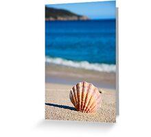 Single Shell Greeting Card