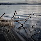 Fishing Lure by Jeffrey  Sinnock