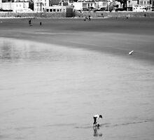 Empty Beach at weston -Lone Girl  by kipstar
