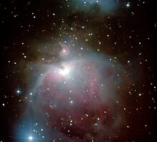 Orion Nebula by Sylvain Girard