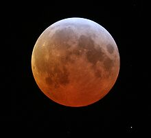 Lunar Eclipse by Sylvain Girard