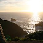 Big Sur #2 by XIII