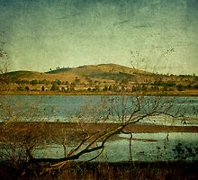 Afternoon on Dangars Lagoon, Northern Tablelands, NSW, Australia by Kitsmumma