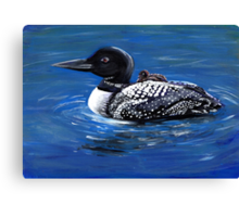 Loon with Chick Canvas Print