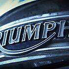 TRIUMPH by Nicholas Averre
