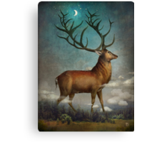 King of the Night Canvas Print