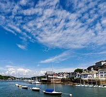View from river Dart towards Dartmouth, Devon, England  by atomov
