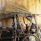 Brooms & Bicycle © by Ethna Gillespie