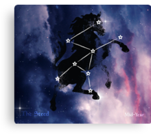 ES Birthsigns: The Steed Canvas Print