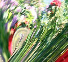 Reflections in Brass 2 by LottieLou