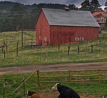 Thunderstorms On The Farm by John  De Bord Photography