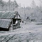 Georgia Homestead by RobPM
