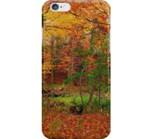 A Canadian silence iPhone Case/Skin