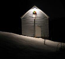 Snowglobe by Merlin Hanson