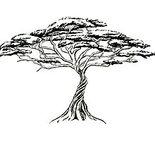Whistling Thorn , Zen Bonsai African Tree Black and White by IrenesGoodies