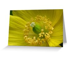 Happy yellow © Greeting Card