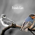 Friends Care (GC) by Dave Law