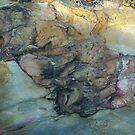 Old Mine Rocks - Bendigo by Alison Howson