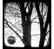 Lunar - TTV Photographic Print
