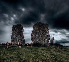 A New Flock by Nigel Bangert