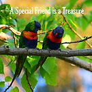 A Special Friend is a Treasure (GC) by Dave Law