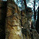 Rocks - Bendigo by Alison Howson